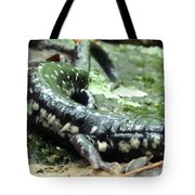 Appalachian Slimy Salamander Tote Bag