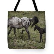 Appaloosa And Baby Tote Bag