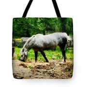 Appaloosa Eating Hay Tote Bag