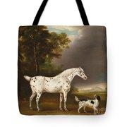 Appaloosa Horse And Spaniel Tote Bag