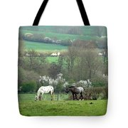 Appaloosa In May Tote Bag