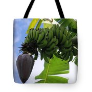 Apple Bananas Tote Bag