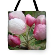 Apple Blossom Buds Art Prints Spring Blossoms Baslee Troutman Tote Bag