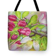 Apple Blossom Buds On A Greeting Card Tote Bag