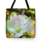 Apple Blossom Close-up Tote Bag