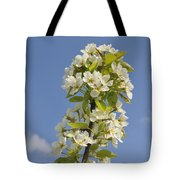 Apple Blossom In Spring Tote Bag