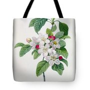 Apple Blossom Tote Bag by Pierre Joseph Redoute