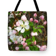 Apple Blossom Pink Tote Bag