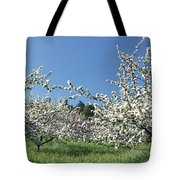 Apple Blossom Trees Norway Tote Bag