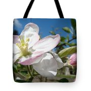 Apple Blossoms Art Prints Canvas Blue Sky Pink White Blossoms Tote Bag