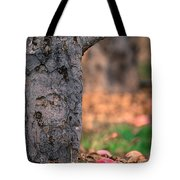 Apple Not Far From Tree Tote Bag