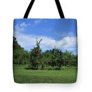 Apple Orchard At Vineyard Tote Bag