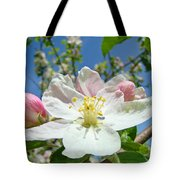 Apple Tree Blossom Art Prints Springtime Nature Baslee Troutman Tote Bag