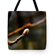 Apple Tree Bud  Tote Bag