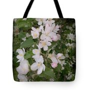 Apple Tree In Bloom Tote Bag