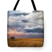Approaching Storm Tote Bag