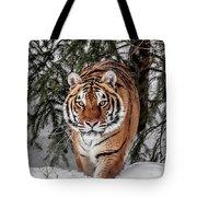 Approaching Tiger Tote Bag
