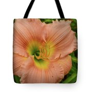 Apricot Day Lily Tote Bag