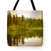 Apricot Reflections Tote Bag