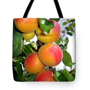 Apricots Tote Bag