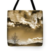 April 22 2010 Tote Bag