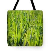 April Dewdrop Fairylights Tote Bag
