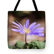 April Grecian Wind Flower  Tote Bag