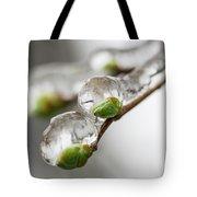 April Ice Storm 5 Tote Bag