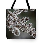 April Ice Storm 8 Tote Bag