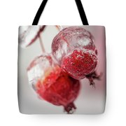 April Ice Storm Apples Tote Bag