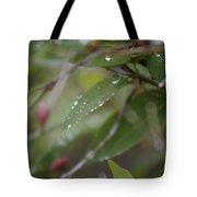 April Showers 1 Tote Bag