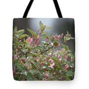 April Showers 10 Tote Bag