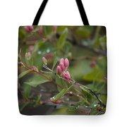 April Showers 2 Tote Bag