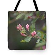 April Showers 3 Tote Bag