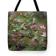 April Showers 6 Tote Bag