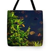 Aquarium Fish And Plants In Zoo Tote Bag