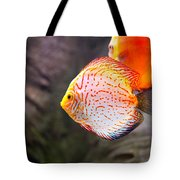 Aquarium Orange Spotted Fish Tote Bag