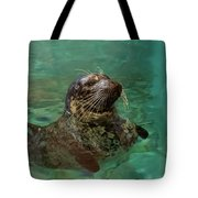 Aquarium Seal  Tote Bag
