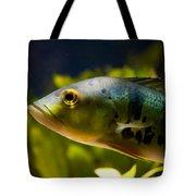 Aquarium Striped Fish Portrait Tote Bag