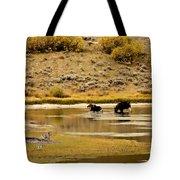 Aquatic Stroll Tote Bag