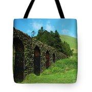 Aqueduct Tote Bag