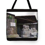Ara De Cesare Tote Bag