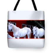 Arab Horses At Home, Behind Their Fence   Tote Bag