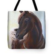 Arabian Prince Tote Bag