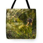 Araneus Morning Tote Bag