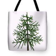 Araucaria Sp Tree Tote Bag
