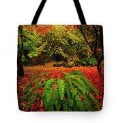 Arboretum Primary Colors Tote Bag