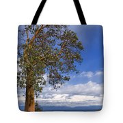 Arbutus Tree At Rathtrevor Beach British Columbia Tote Bag