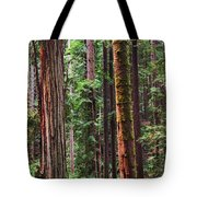 Arcata Forest Tote Bag