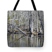 Arch And Reflections Tote Bag